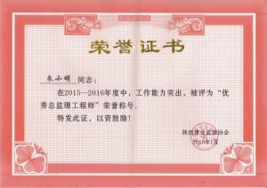 朱小明2015-2016优秀总监